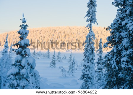The northern winter landscape in Sweden and cold weather.