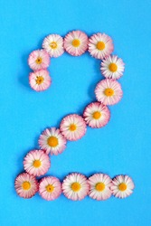 The number 2 is written in white pink flowers on a blue background. The number two is written in fresh colors, highlighted on a blue background. Arabic numeral inlaid with daisies.