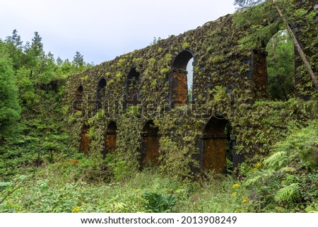 The old aqueduct called Muro das Nove Janelas (Nine Windows Wall) overgrown by lush green plants at São Miguel Island, Azores, Portugal.  Foto d'archivio ©