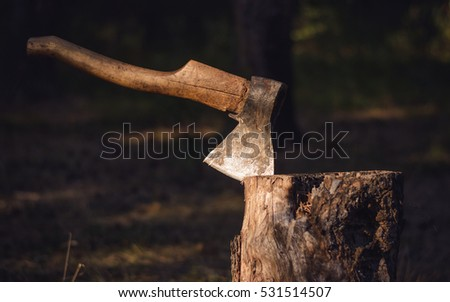 The old axe in the chopping block