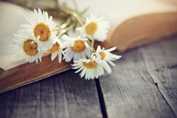The old book and bouquet of camomiles lie on a wooden table.