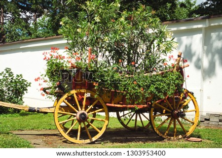 The old carriage used as a flowerbed in the backyard of the orthodox monastery on Fruska Gora, Serbia