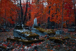 The old Catholic cemetery in the fall. Abandoned graves under a layer of fallen leaves