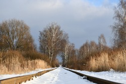 The old railway, going away among bare trees and bushes. Narrow gauge in the snow. Winter landscape.