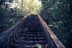 The old stairs are steep and narrow, surrounded by woods.