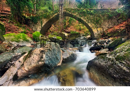 The old stone bridge (constructed in 1787) close to Tsangarada village, Pelion mountain, Magnesia prefecture, Thessaly, Greece. Date taken: 17.1.2010