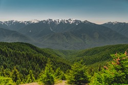 The Olympic mountains in summer, viewed from the Hurricane Hill trail in Olympic National Park.