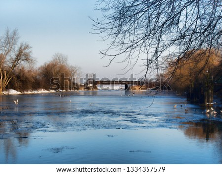 The Onondaga Creek in Syracuse , New York, an outlet of Onondaga Lake in the distance. Once poluted it is now home to a convocation of American Bald Eagles and many other avian species #1334357579
