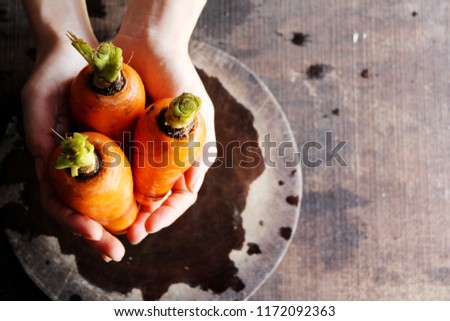 The organic carrots