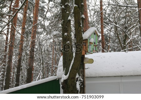 The original birdhouse for a large family of birds, covered with snow with a winter forest #751903099