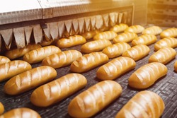 The oven in the bakery. Hot fresh bread leaves the industrial oven in a bakery. Automatic bread production line