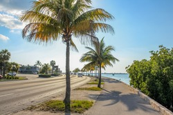 The Overseas Highway, the highway that connects the islands Keys from Florida, called North Roosevelt Blvd when entering in Key West. The Roosevelt Blvd is a long street with palms along the ocean.