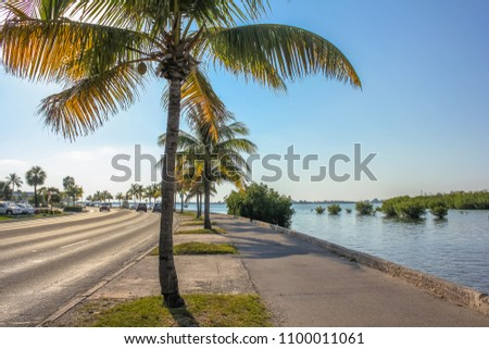 The Overseas Highway, the highway that connects the islands Keys from Florida, called North Roosevelt Blvd when entering in Key West. This boulevard is a long street with palms along the ocean. #1100011061