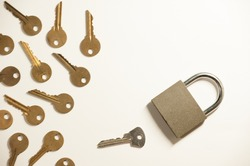 The padlock and many key imitating the egg and sperm