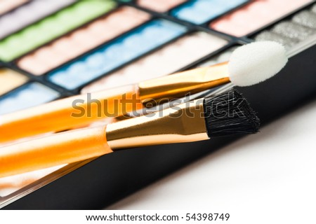 The palette for makeup with two brushes