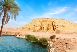 The palm on the bank of the Nile river in Abu Simbel Temple, Egypt