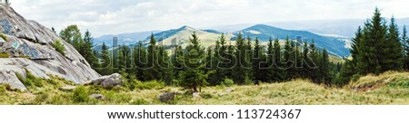 the Panorama with mountains and forest
