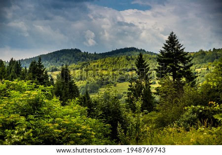 the panoramic view of landscape of the carpathian mountains, national park Skolivski beskidy, Lviv region of Western Ukraine Foto stock ©