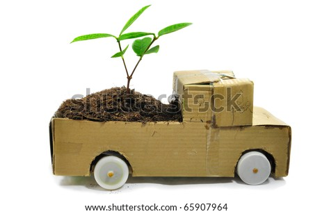 The paper automobile and the seedling ,