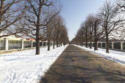 The park of the Schönbrunn castle in Vienna