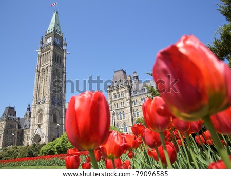 The Parliament of Canada with red tulips in the foreground