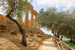 The path and trees below the Temple of Juno (Tempio di Giunone - Hera Lacinia) in Valley of the Temples (Valle dei Templi) in Sicily near Agrigento