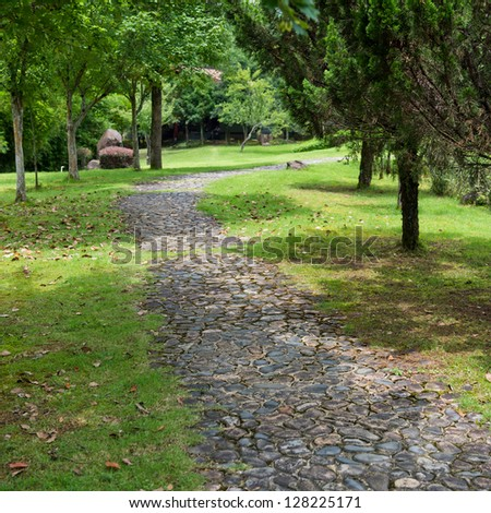 The path in the park.