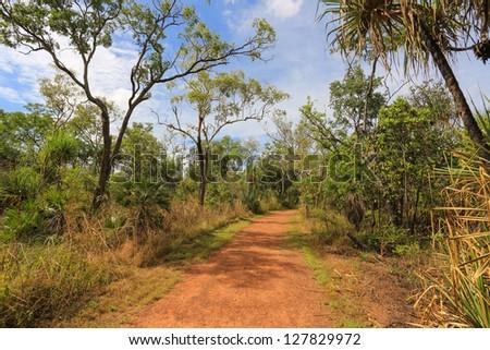 The path through Kakadu National Park