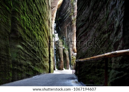 The Path Through the Green Rocky Canyon in the Resort of the Adrspach-Teplice Mountain, Czech Republic #1067194607