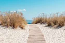 The path to the beach, the perfect destination during summer.