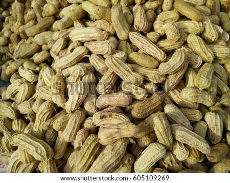 Shutterstock the peanut, also known as the groundnut and goober and taxonomically classified as Arachis hypogaea