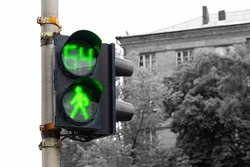 the pedestrian traffic lights with green light and number 64 on a sidelight, city buildings in the background. Permission to pass pedestrians on the road