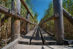 The pedestrian wooden footbridge with the railing goes through the dry reeds in the lake, with shallow water all around.
