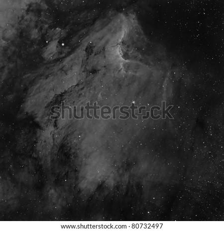 The Pelican Nebula in the Constellation Cygnus