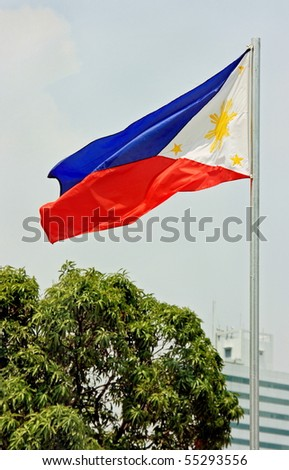 The Philippine flag waving in the park