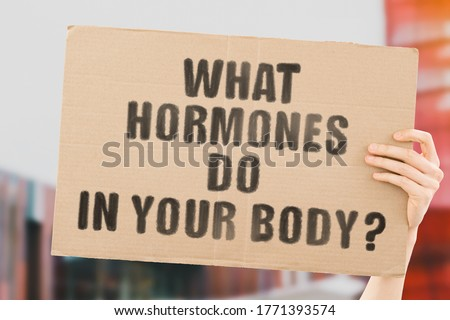 The phrase ' What hormones do in your body ' on a banner in men's hand with blurred background. Body's cells. Hormone. Biology. Function. Organism. Reproduction. Chemical substances. Hospital. Medical Stock fotó ©
