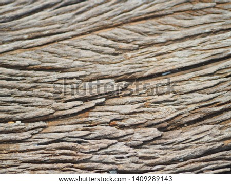 The picture of wood texture. #1409289143