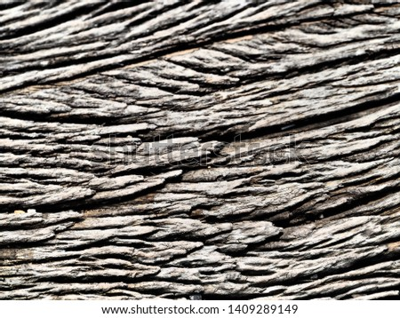 The picture of wood texture. #1409289149