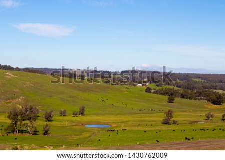 The  picturesque rural and farming area  in the Ferguson Valley near Dardanup South Western Australia is a tourists' paradise with hills and valleys, wineries and accommodation .  #1430762009