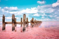 The pink lake is a beautiful landscape, unusual nature. A unique rare natural phenomenon. Salt lake with pink algae. Beautiful landscape.