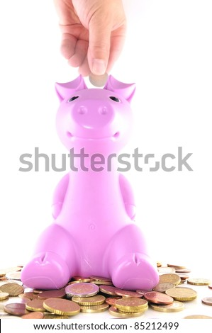 The pink pig's piggy bank.