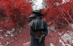 the plague doctor in the forest of the middle ages