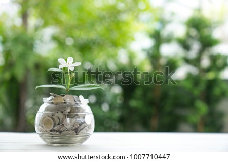 The plant grows out of coins. #1007710447