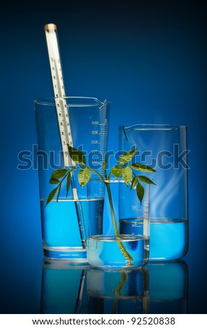 The plant is artificial grown up in laboratory. Modern technologies in a science and medicine.