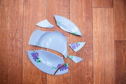 The plate fell to the floor and broke into small pieces. Shards of a chopped dish