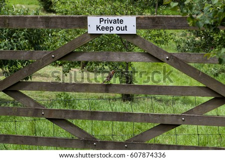 """The plate with the inscription """"Private Keep out"""" hanging on the gate and little bird Robin sitting on the gate #607874336"""