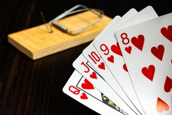 The poker hand is a royal flush. Playing cards on the background of a mousetrap.