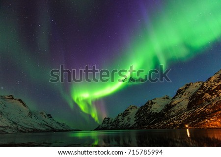 The polar lights in Norway . Ersfjord. Tromso  #715785994
