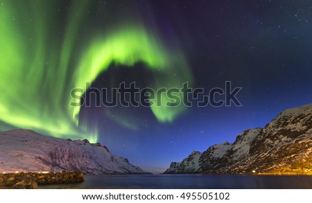 The polar lights in Norway,Tromso ,Ersfjord #495505102