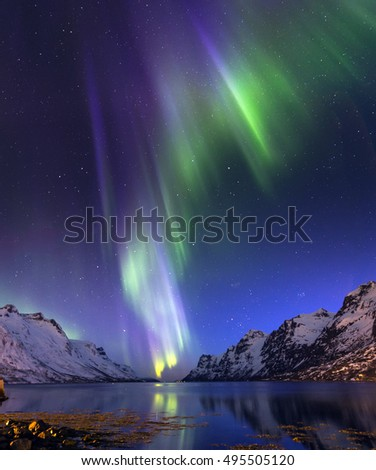 The polar lights in Norway,Tromso ,Ersfjord #495505120